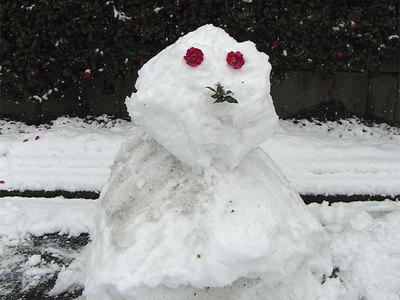 雪だるま ね、なかなかいいでしょ! (^^) 出先から戻る途中、こんな雪だるまを... 雪だるま