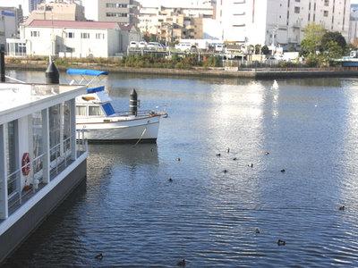 水辺の景色
