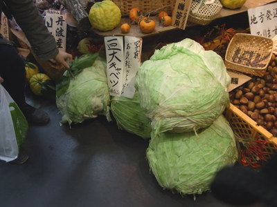 D101125cabbage