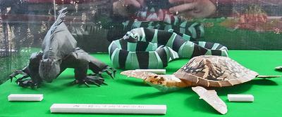 切り折り紙の両生爬虫類