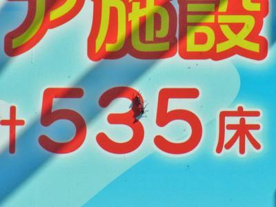 D120413mushi