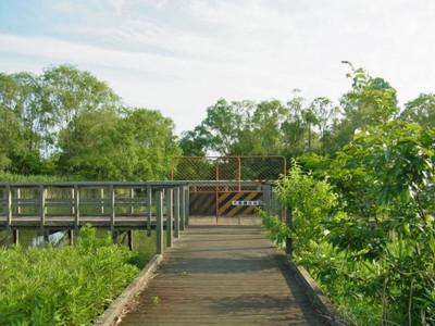 板橋生物生態園