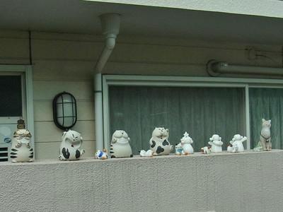 塀にいたネコたち