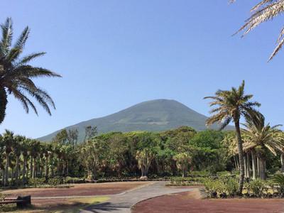 植物園から見た八丈富士