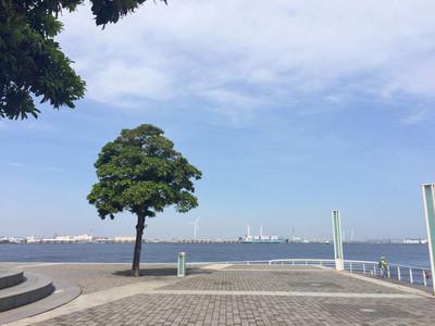 ヨコハマ風景