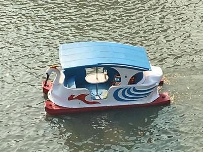 クロツラヘラサギ型ボート