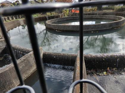 二ヶ領用水久地円筒分水