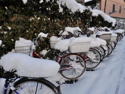 自転車のカゴの雪