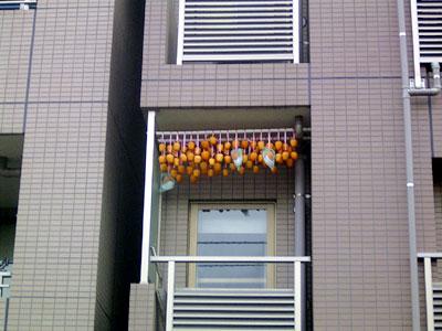 d051115-hoshigaki