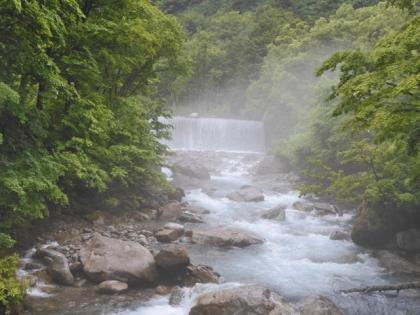 D190628tamagawa