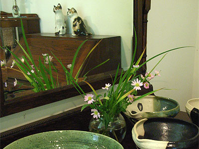 野の花が置かれたミュージアム・ショップ内の棚