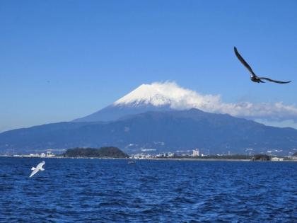 駿河湾からの富士山