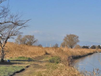 川岸の風景