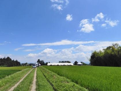 田園風景の中のブランチ会場
