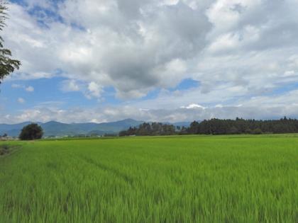 安積野の田園風景